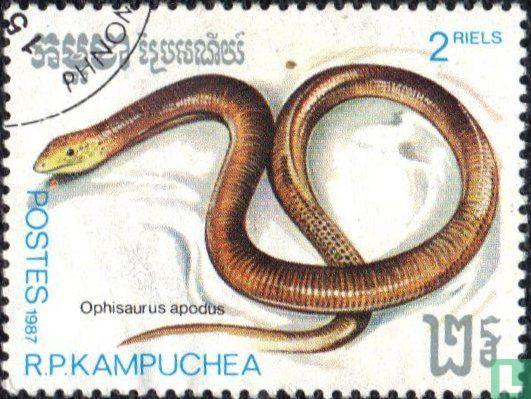 Cambodja - Reptielen