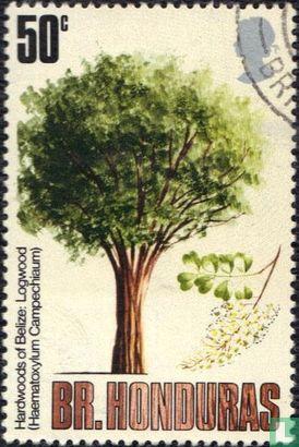 British Honduras - Trees