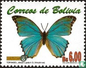 Bolivia [BOL] - Insects