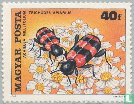 Hongrie - Pollinisation des fleurs