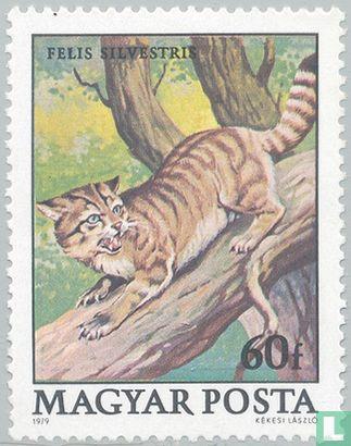 Hongarije - Beschermde dieren