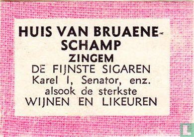 Huis Van Bruaene-Schamp