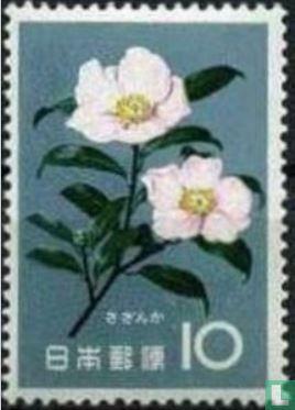 Japan [JPN] - Flowers