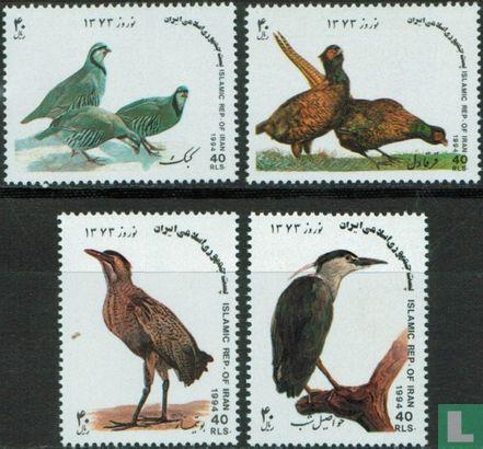 Iran (Perzië) - Vogels
