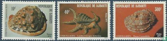 Djibouti - Shells