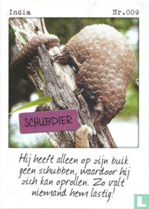 Albert Heijn - India - Schubdier