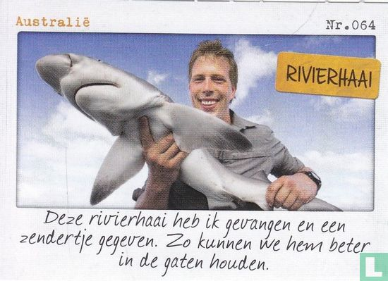Albert Heijn - Australië - Rivierhaai