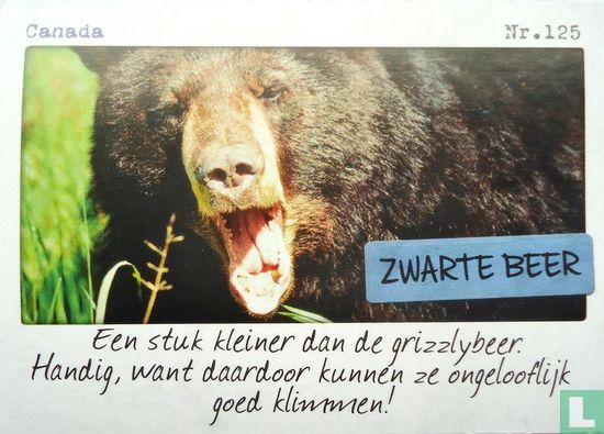Albert Heijn - Canada - Zwarte beer