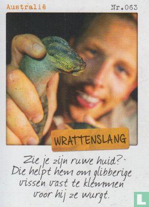 Albert Heijn - Australië - Wrattenslang