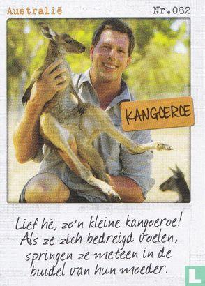 Albert Heijn - Australië - Kangoeroe