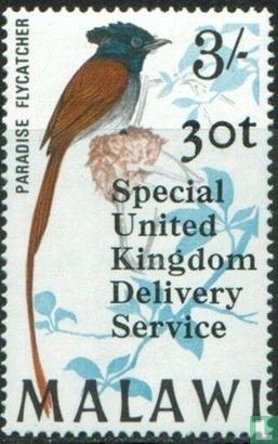 Malawi - Oiseaux