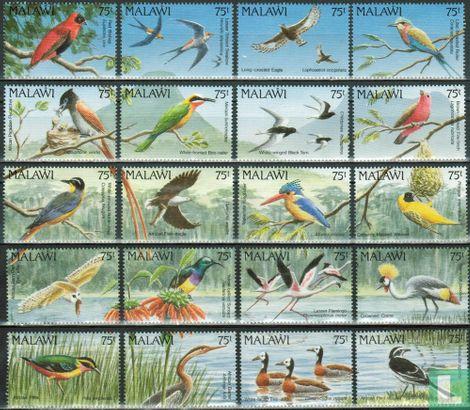 Malawi - Vögel