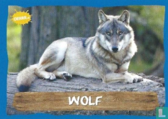 Emté - Wolf