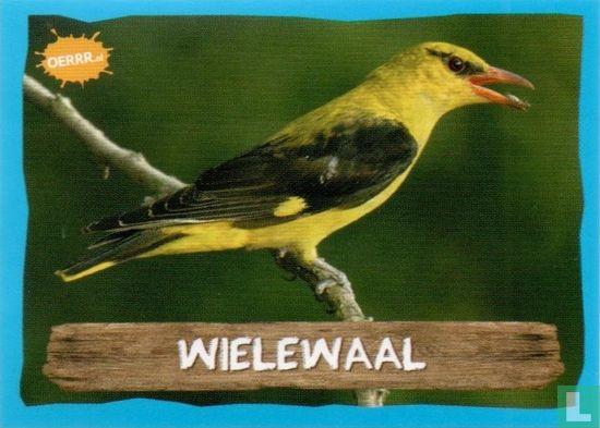 Emté - Wielewaal