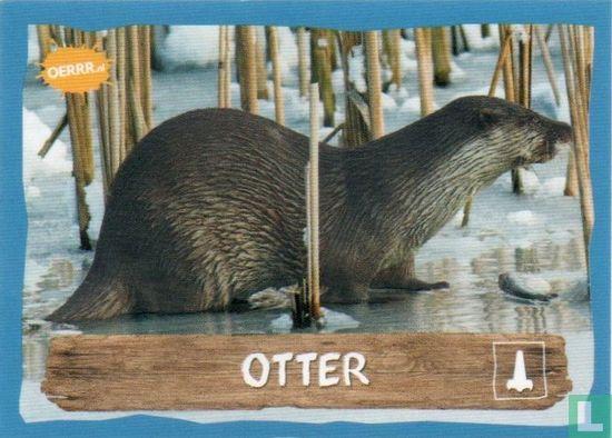 Emté - Otter