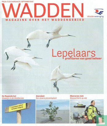 Wadden 3 - Image 1