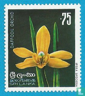 Sri Lanka - Inheemse bloemen