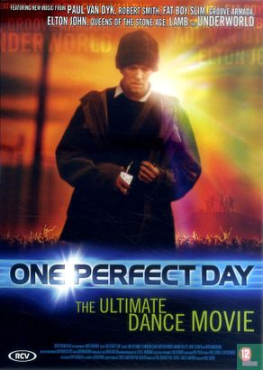DVD - One Perfect Day