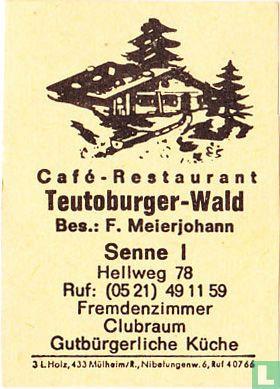 Teutoburger-Wald - F. Meierjohann
