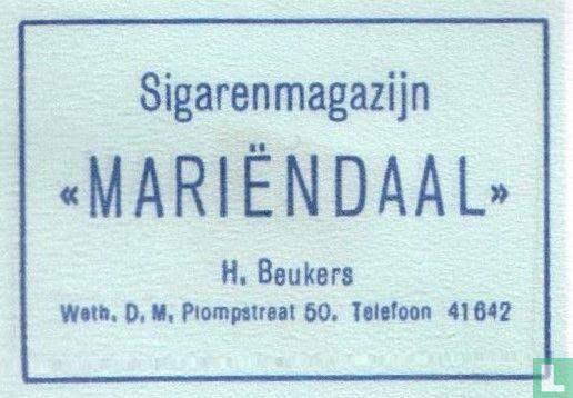 Sigarenmagazijn Mariendaal   - Image 1