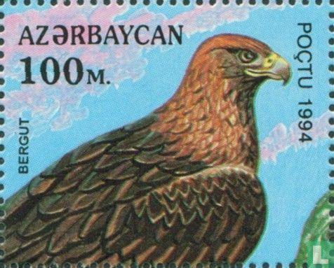 Azerbaijan - Birds of prey