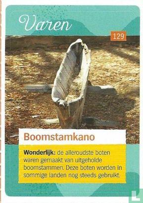 Albert Heijn - Boomstamkano