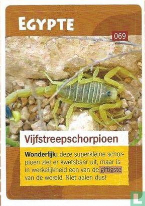 Albert Heijn - Vijfstreepschorpioen