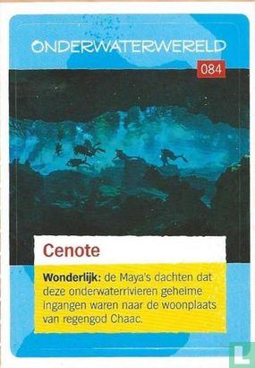 Albert Heijn - Cenote