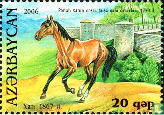 Azerbaijan - Karabakh Horse