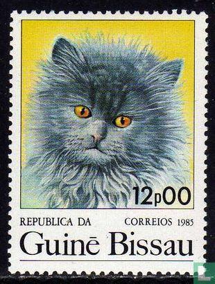 Guinee-Bissau - Katten