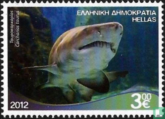 Greece - Marine Life