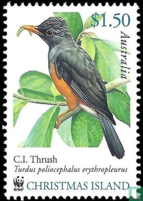 Christmaseiland [CXR] - WWF - Vogels