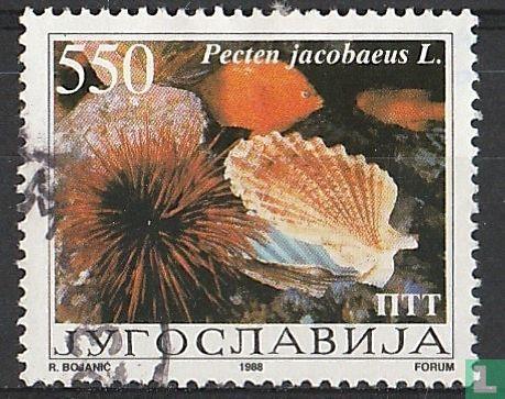 Joegoslavië - Schelpen