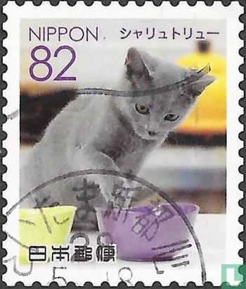 Japan [JPN] - Pets 2 - Cats