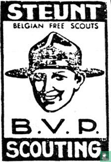 Steunt B.V.P. Scouting - Afbeelding 1