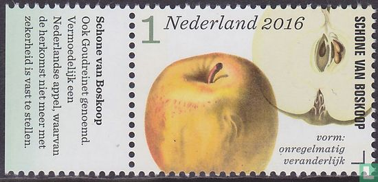 Netherlands [NLD] - Apple and pear varieties