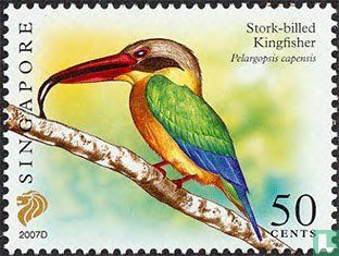 Singapore - Birds