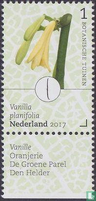 Netherlands [NLD] - Botanic Gardens