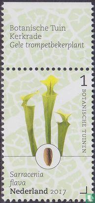 Nederland [NLD] - Botanische tuinen - Kerkrade