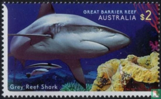 Australia [AUS] - Life on the Great Barrier Reef