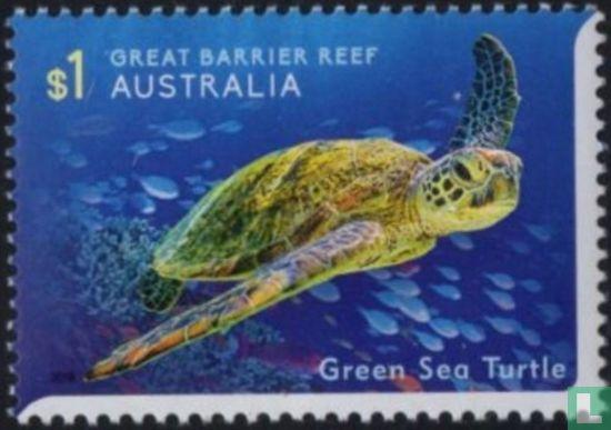 Australië [AUS] - Het leven op het Great Barrier Reef