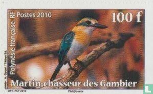 Frans-Polynesië - Vogels van Polynesie