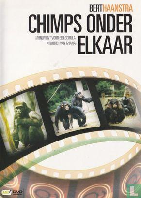 DVD - Chimps onder elkaar