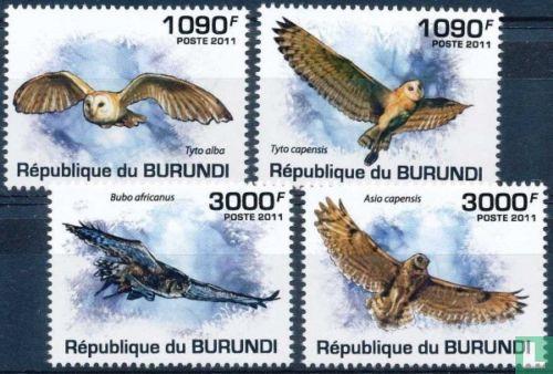 Burundi [BDI] - chouettes