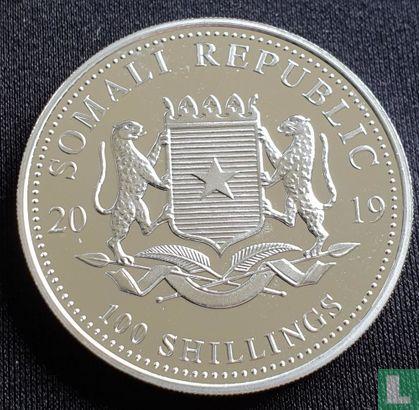 """Somalie - Somalie 100 shillings 2019 (argent - non coloré) """"Elephant"""""""
