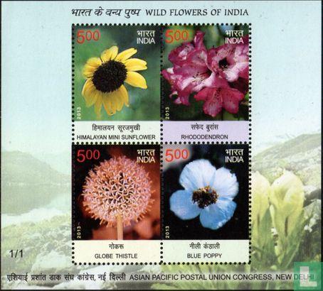 India - Wilde bloemen