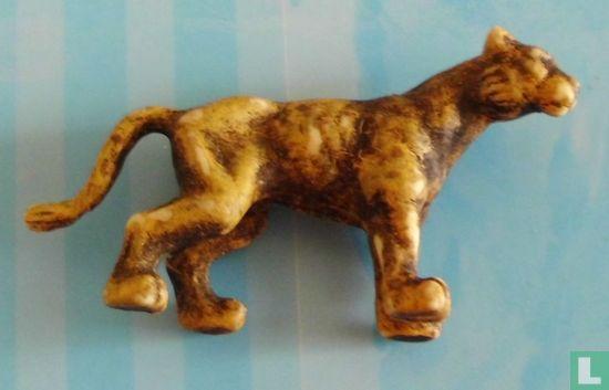 Dieren: Panters - Panther