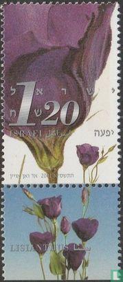 Israel - Stamp Exhibition Jerusalem '01