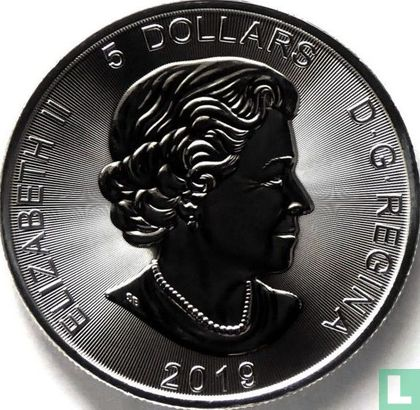 """Canada 5 dollars 2019 (colourless) """"Grizzly bear"""" - Image 1"""