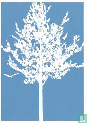 Go-card - 13381 - Cecilie von Haffner & Lea Rathnov 'Trees #1'